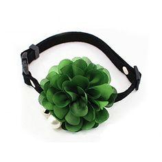 PETFAVORITES™ Designer Wedding Flower Suede Leather Pet C... https://www.amazon.com/dp/B01FZNJ8KO/ref=cm_sw_r_pi_dp_x_lQgBybRWNHMY6
