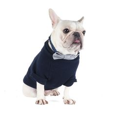 French Bulldog wearing a Blue Love T-Shirt
