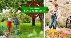 Checkliste Garten im November: Pflanzen, Gartenarbeiten und alles winterfest machen