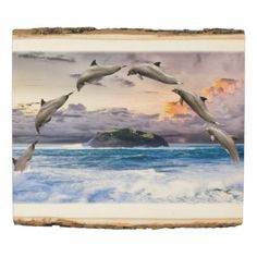 #fishing - #Dolphins Wood Panel