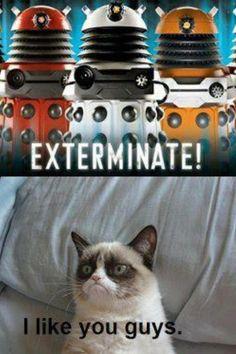 Finally! Grumpy Cat has found some friends :) #doctorwho #daleks #grumpycat