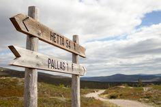 Pallas, Lapland, Finland