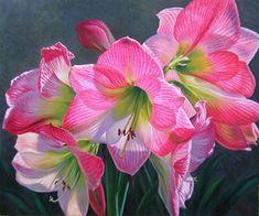 Австралийская художница Fiona Craig.