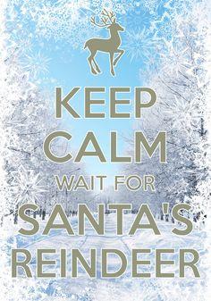keep calm wait for Santa's reindeer / Created with Keep Calm and Carry On for iOS #keepcalm #Christmas #reindeer