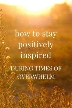 How to stay positively inspired during times of overwhelm - Q&A on The School of Greatness podcast