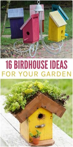 Bird house chandelier and living roofed birdhouse Homemade Bird Houses, Bird Houses Diy, Decorative Bird Houses, Birdhouse Designs, Birdhouse Ideas, Backyard Projects, Garden Projects, Garden Ideas, Diy Projects