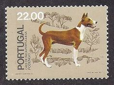 Dog Art Full Body Postage Stamp Portuguese PODENGO Native Portugal Dogs 1981 MNH