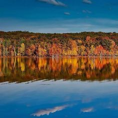 We love the fall foliage reflected on calm @experiencegrandrapids waters shared by @freddiebennett! In your opinion, which Michigan destination has the best fall colors? Share with us by commenting! #PureMichigan #GrandRapids