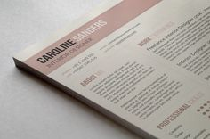 Clean CV and Cover Letter Template - A Dash of Pizzazz