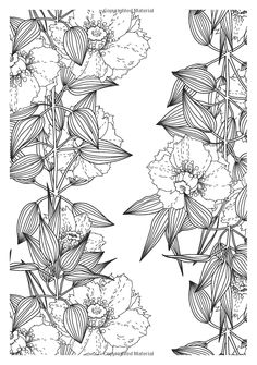Pretty Patterns Creative Colouring For Grown Ups Amazoncouk