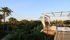 Bangkok Tree House Thailand
