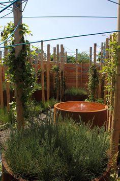 Hoveniersbedrijf Visio Vireo Tuinen, met tuinontwerper Jelle Reeder, maakt in 2014 een hoofdprijs winnend tuinontwerp in De Tuinen van Appeltern www.appeltern.nl.