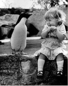 I dont think I have ever seen anything cuter than this... Penguins and kids.... Love them both!!!