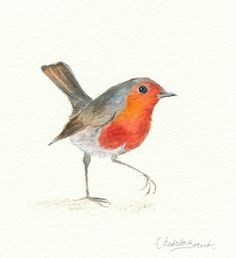 ARTFINDER: Cock Robin by ISABELLE BRENT - Watercolour study capturing the stance of Cock Robin. One of a series of freely painted birds by illustrator Isabelle Brent. Start your collection of paintin...