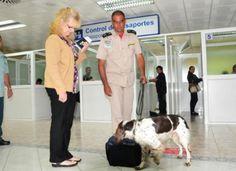 ENTÉRATE! Según cifras oficiales Cuba incautó más de 100 kilos de droga en 2015