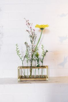 Vintage Test Tube Rack   Perfect For Holding Flowers   Science Chemistry  Science Love   Science Wedding Decor Gallery