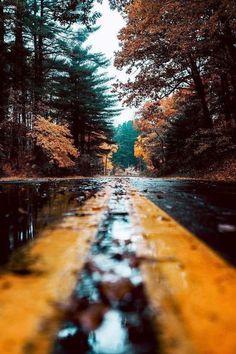 "Banshy: ""untitled by josh alvarez "" beautiful pictures, autumn aesthetic photography, fall Autumn Photography, Creative Photography, Amazing Photography, Landscape Photography, Art Photography, Travel Photography, Halloween Photography, Iphone Photography, Photography Backdrops"