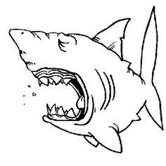 Dessin d 39 un requin furieux colorier coloriages de poissons et animaux marins pinterest - Modele dessin requin ...
