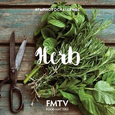 Day 2 - #FMphotochallenge   How awesome are HERBS! Herbs can add incredible flavor to dishes and have a plethora of health benefits! Herbs also happen to feature in one of our latest FMTV releases 'Juliette Of The Herbs' - If you haven't seen this film already you can watch it here on FMTV: https://www.fmtv.com/watch/juliette-of-the-herbs  Join the challenge here on Instagram: https://instagram.com/fmtv_official/