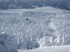 Zao Ski Resort, Japan