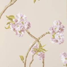Discover+the+Nina+Campbell+Orchard+Blossom+Wallpaper+-+NCW4027-03+at+Amara