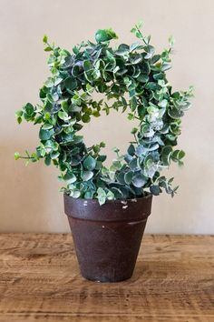 Small Eucalyptus Wreath in Pot