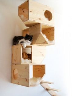 Geometric Cat Houses : wall-mounted cat house