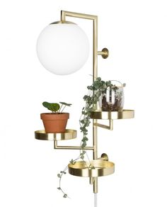 Globen Lighting Astoria Børstet Messing Vegglampe
