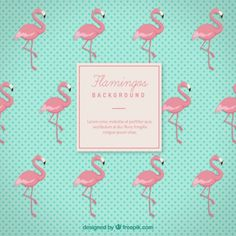 Flamingos fundo Vetor grátis