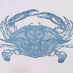 blue sea creatures. sageatelier.