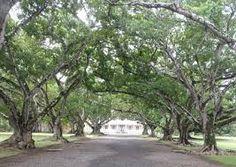 mauritius chateau labourdonnais - Recherche Google