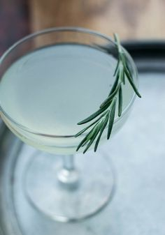 Rosemary Gimlet: A delicious winter cocktail served icy cold with the herbal taste of rosemary!