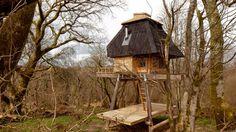 Deze boomhut is gebouwd voor een schrijver op zoek naar rust