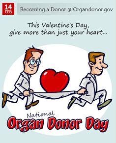 Feb 14 - National Organ Donor Day