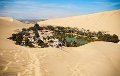 oasis desierto sahara - Buscar con Google