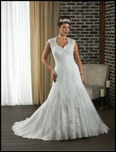 Tulle and Lace Sweetheart Mermaid Plus Size Wedding Dress with Illusion Sleeves