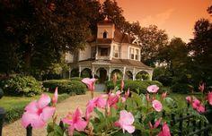 Dream dream dream home.