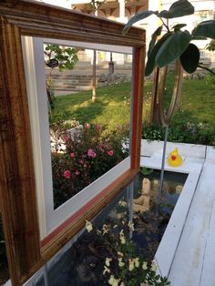 Water garden - by Violarancio garden design
