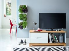 No garden? No problem! Bring the outdoors in by placing gorgeous plants into cubed wall shelves.