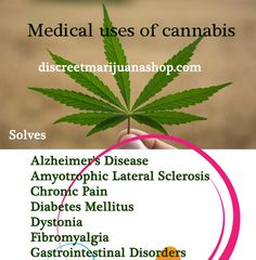 Are you cannabis user please take some time to read this topic. cannabis really solve some diseases. Visit discreetmarijuanashop.com and know their uses and buy it offline. More secure and genuine online seller in USA.
