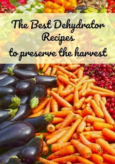 The best dehydrator recipes to preserve the harvest (and a fruit roll recipe!) The best dehydrator recipes to preserve your harvest of fruits and vegetables. Dehydrated Vegetables, Dehydrated Food, Emergency Food, Survival Food, Survival Tips, Wilderness Survival, Survival Skills, Canning Food Preservation, Preserving Food