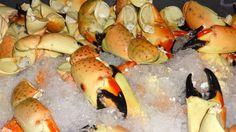 Florida Insight: Stone crab season gets cracking: Travel Weekly