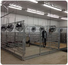 Calf Climate : Cattle Coolers and Livestock Coolers