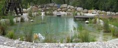 Building a Natural Swimming Pool | Build A Natural Swimming Pond We built over 200 ponds and
