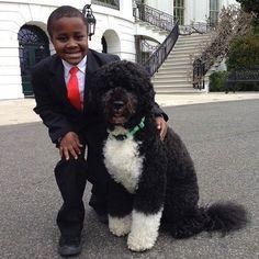 Kid President and Bo Obama! Thank You President Obama, Kid President, President Quotes, Bo Obama, Barak And Michelle Obama, Presidential Portraits, Presidente Obama, Portuguese Water Dog, Black Presidents