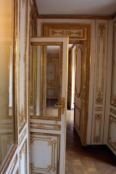 LES LIAISONS DE MARIE ANTOINETTE:  OHHHH…A SECRET DOOR  THE BEAUTIFUL GILDED DOORS IN THE KINGS PRIVATE APARTMENTS IN VERSAILLES