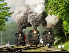 Mountain State Railroad & Logging Historical Association  Cass Railfan Weekend May 2014.
