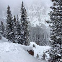 Beavercreek #snow #colorado #mountains