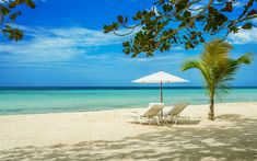 Idle Awhile Negril Jamaica Luxury Resort - Private Beach Wedding & Honeymoon