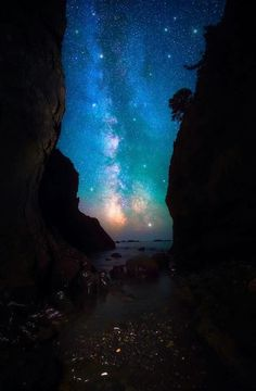 Night on Earth ... Pacific Coast, Olympic National Park, Washington | by Dave Morrow from 500px